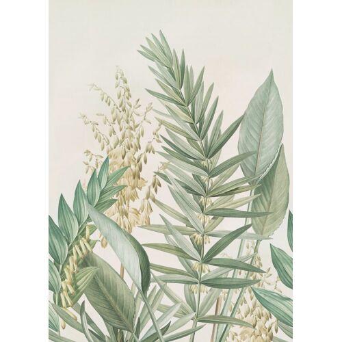 ART for the home Fototapete »Palmlilie«, (4 St)