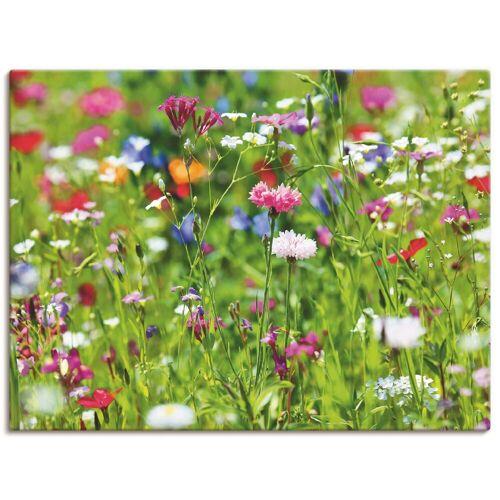 Artland Wandbild »Blumenwiese I«, Blumenwiese (1 Stück), in vielen Größen & Produktarten -Leinwandbild, Poster, Wandaufkleber / Wandtattoo auch für Badezimmer geeignet