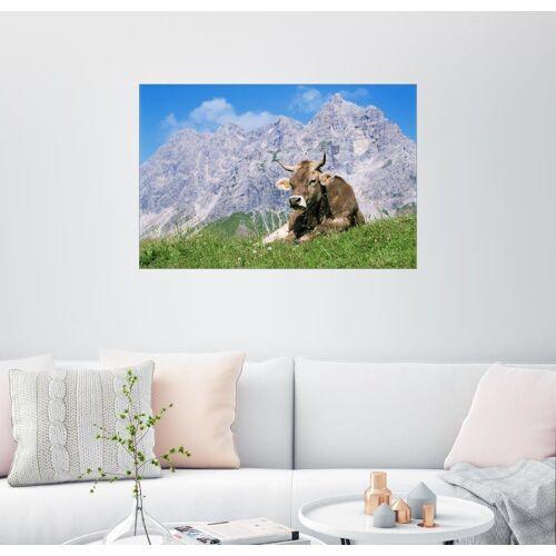 Posterlounge Wandbild, Kuh auf einer Almwiese