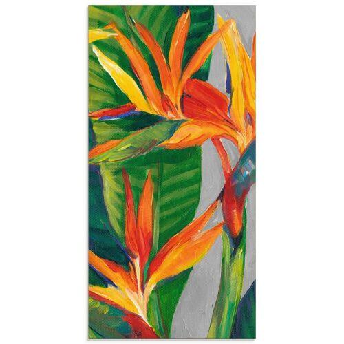 Artland Glasbild »Paradiesvogel II«, Pflanzen (1 Stück)