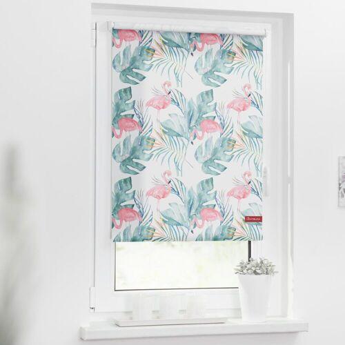 LICHTBLICK ORIGINAL Seitenzugrollo »Rollo Klemmfix, ohne Bohren, blickdicht, Flamingo - Rosa Grün«, , blickdicht, freihängend