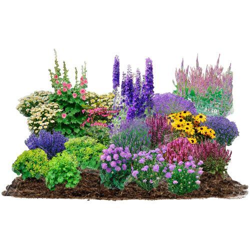 BCM Beetpflanze »Cottage Garden« Set, 21 Pflanzen