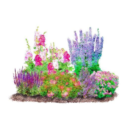 BCM Beetpflanze »Romantischer Garten« Set, 6 Pflanzen