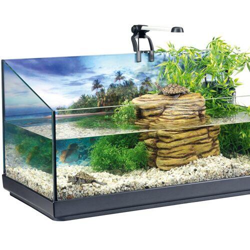 Tetra Aquarien-Set »Repto«, BxTxH: 40x39x77 cm, 40 l, für junge Wasserschildkröten