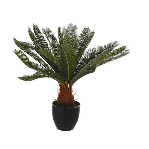 DEPOT Palme i.Topf ca.72cm, grün