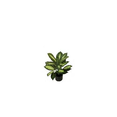 Lesli Living Dieffenbachia 50 cm, künstliche Dekopflanze, Kunstpflanze