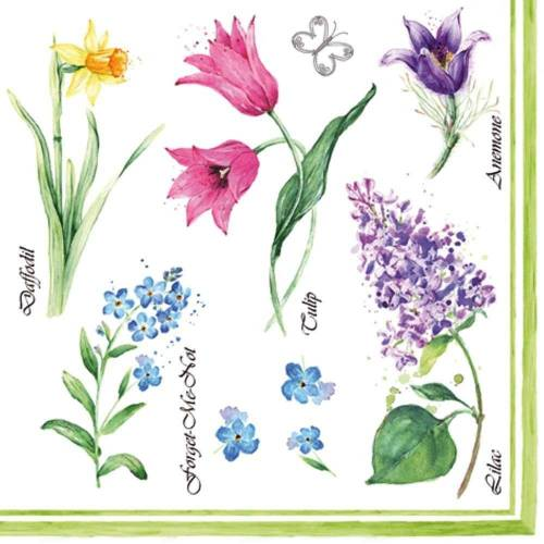 Linoows Papierserviette »20 Servietten, Frühling, heimische Frühlingsblumen«, Motiv heimische Frühlingsblumen