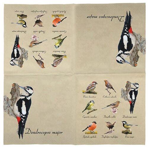 Linoows Papierserviette »20 Servietten mit Vogelsammlung, heimische Vögel,«, Motiv Vogelsammlung, heimische Vögel, Vogel