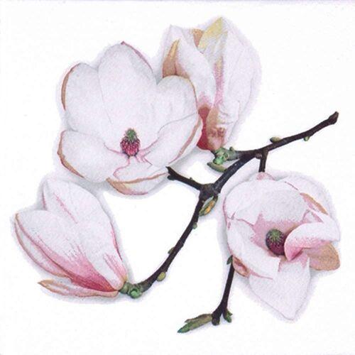 Linoows Papierserviette »20 Servietten, Weiße Magnolien, Blühender Magnolie«, Motiv Weiße Magnolien, Blühender Magnolienzweig