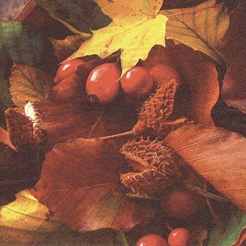 Linoows Papierserviette »20 Servietten Herbstlaub mit Hagebutten, farbige«, Motiv Herbstlaub mit Hagebutten, farbige Herbstszene