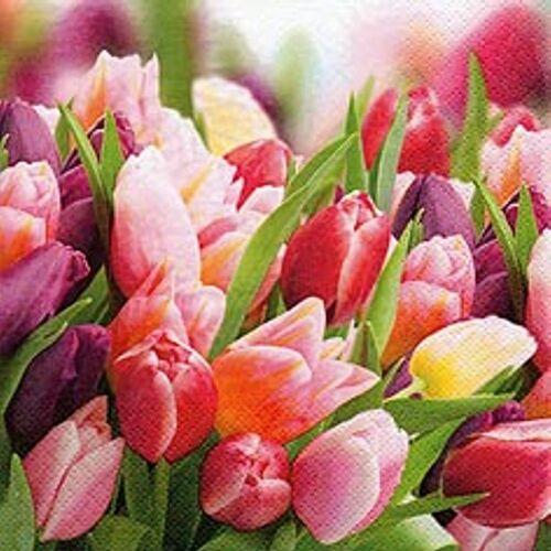 Linoows Papierserviette »20 Servietten, Ein Traum mit Tulpen in Pink und«, Motiv Ein Traum mit Tulpen in Pink und Violett
