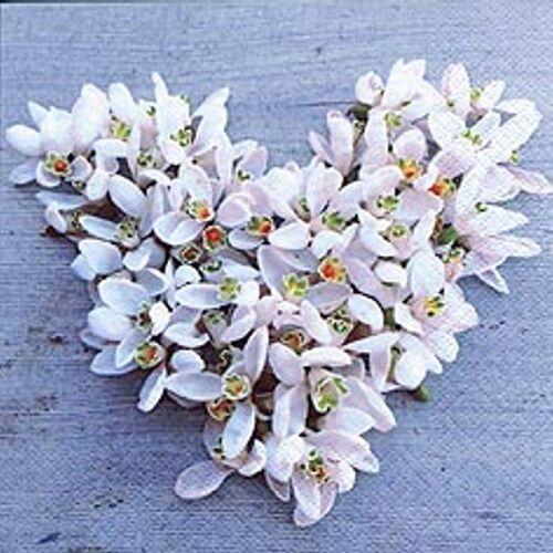 Linoows Papierserviette »20 Servietten, Frühling, Süßes Schneeglöckchen«, Motiv Frühling, Süßes Schneeglöckchen Herz