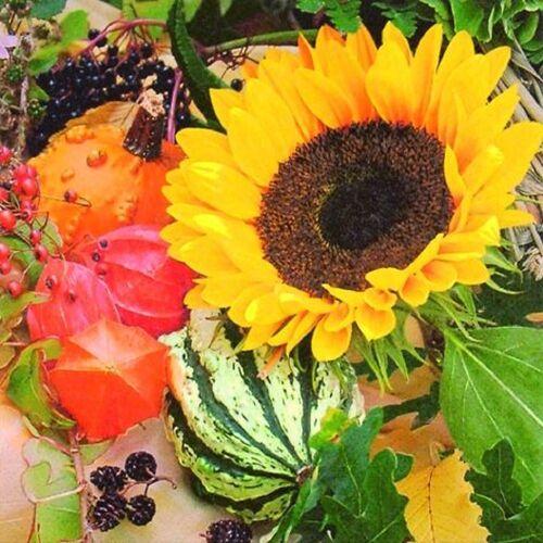 Linoows Papierserviette »20 Servietten, Sonnenblumen Melonen und Beeren«, Motiv Sonnenblumen Melonen und Beeren Intermezzo