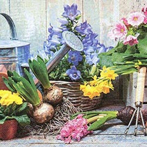 Linoows Papierserviette »20 Servietten, Frühling, Zwiebelblüher auf dem«, Motiv Frühling, Zwiebelblüher auf dem Pflanztisch