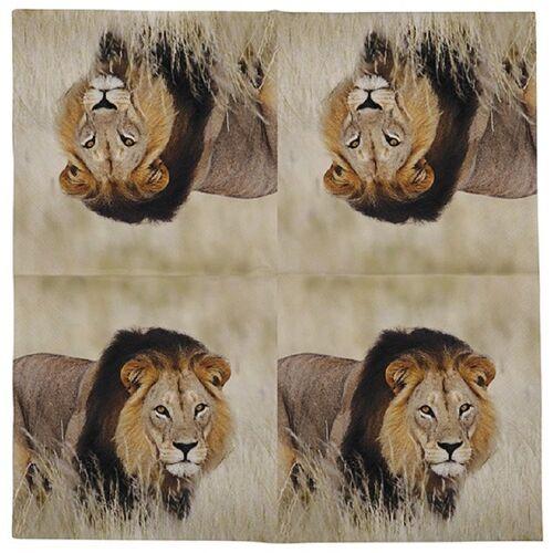 Linoows Papierserviette »20 Servietten Löwe, Afrikanische Tiere der Löwe«, Motiv Löwe, Afrikanische Tiere der Löwe