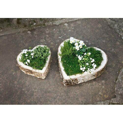 HomeLiving Blumentopf »Birke«