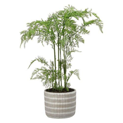 HTI-Living Kunstpflanze »Kunstpflanze Farn im Topf«, , Höhe 65 cm