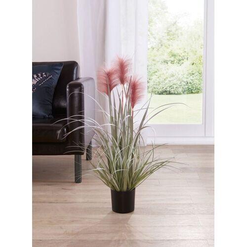 Home-trends24.de Kunstpflanze »Kunstpflanze Mauve Pflanze Topfpflanze Kunstblume Zimmerpflanze«, , Höhe 80 cm