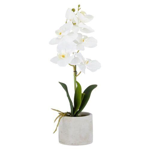 HTI-Living Kunstblume »Kunstblume Orchidee im Topf«, , Höhe 40 cm