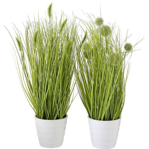 BOLTZE Kunstpflanze »2er-Set Kunstpflanze im Topf«,