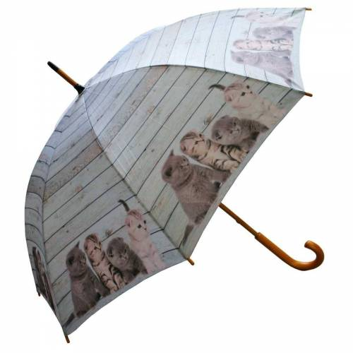 Mars & More Stockregenschirm »440s Regenschirm Baby-Kätzchen«