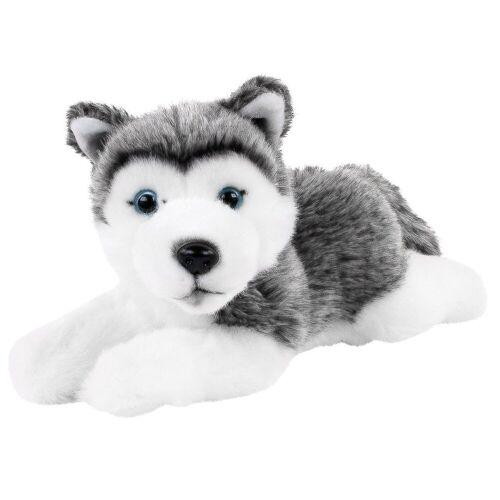 Teddys Rothenburg Kuscheltier (Hund Husky liegend 25 cm (mit Schwanz), Stofftier, Stoffhunde, Huskys, Plüschtier, Plüschhunde, Plüschhusky)