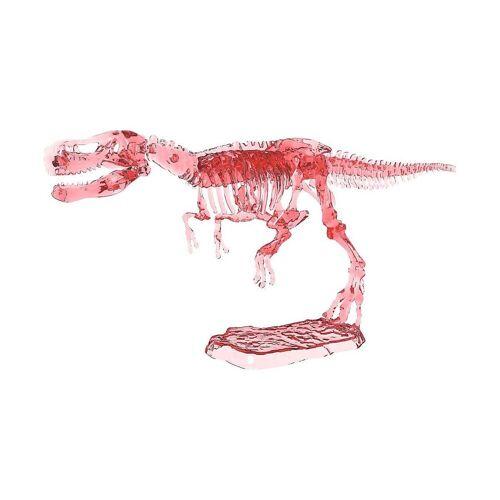 moses Lernspielzeug »T-Rex: Cooles Leuchtskelett zum Ausgraben«