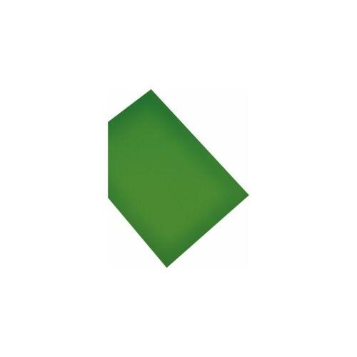 magnetoplan Magnetpapier - DIN A4, VE 2 Stk - grün Magnet Magnete Magnetplatte