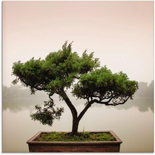 Artland Glasbild Chinesischer Bonsaibaum, Bäume, (1 St.) B/H: 30 cm x grün Glasbilder Bilder Bilderrahmen Wohnaccessoires