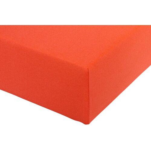 Spannbettlaken B/L: 140-160 cm x 200-220 orange Bettlaken Betttücher Bettwäsche, und