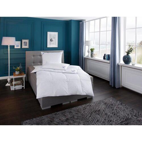 RIBECO Federbettdecke Anker, normal, (1 St.) B/L: 200 cm x 220 cm, normal weiß Allergiker Bettdecke Bettdecken Bettdecken, Kopfkissen Unterbetten