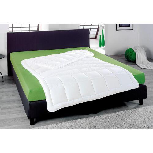 KBT Bettwaren Kunstfaserbettdecke Thermaxx Plus, warm, (1 St.) B/L: 135 cm x 200 cm, warm weiß Allergiker Bettdecke Bettdecken Bettdecken, Kopfkissen Unterbetten