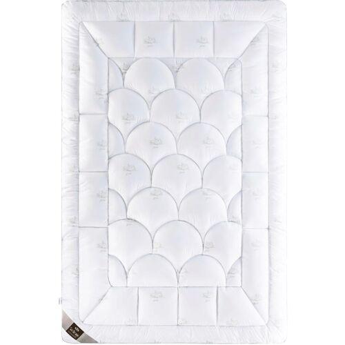 SEI Design Kunstfaserbettdecke SWAN, warm, (1 St.) B/L: 200 cm x 220 cm, warm weiß Allergiker Bettdecke Bettdecken Bettdecken, Kopfkissen Unterbetten
