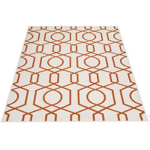 andas Teppich Nelda, rechteckig, 10 mm Höhe, Wohnzimmer B/L: 160 cm x 230 cm, 1 St. beige Esszimmerteppiche Teppiche nach Räumen