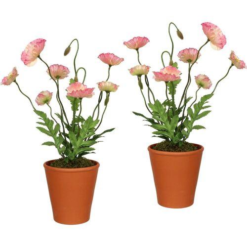Creativ green Künstliche Zimmerpflanze, im Tontopf (2er Set) H: 38 cm rosa Zimmerpflanze Zimmerpflanzen Kunstpflanzen Wohnaccessoires