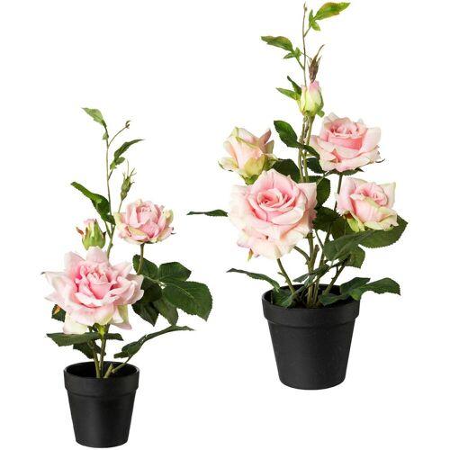 Creativ green Künstliche Zimmerpflanze, 2er Set H: 40 cm-48 cm rosa Zimmerpflanze Zimmerpflanzen Kunstpflanzen Wohnaccessoires