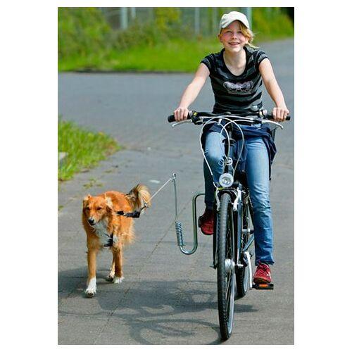 HEIM Fahrradleine, mit Fahrradhalter für Hunde bis 20 kg Einheitsgröße silberfarben Fahrradleine Heim