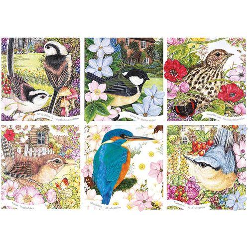 Otter House puzzle Garden Birds 68,5 x 49 cm 1000 Teile