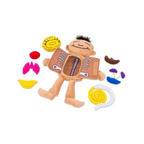 Roylco Was ist in meinem Körper - Puppe