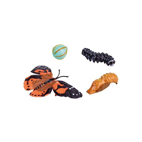 Insect Lore Lebenszyklus-Figuren: Schmetterling