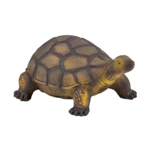 Betzold Schildkröte, Naturkautschuk