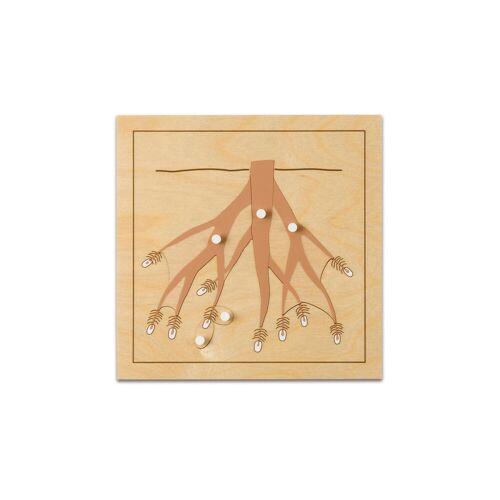 Nienhuis Montessori Botanisches Puzzle