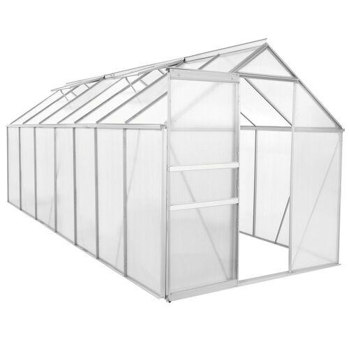 Zelsius Aluminium Gewächshaus 430 x 190 cm, 6 mm Platten, 8,17 m²