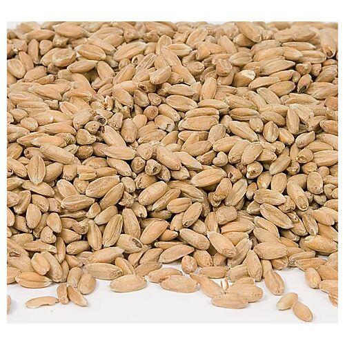 Bio-Dinkelkerne, 1 kg