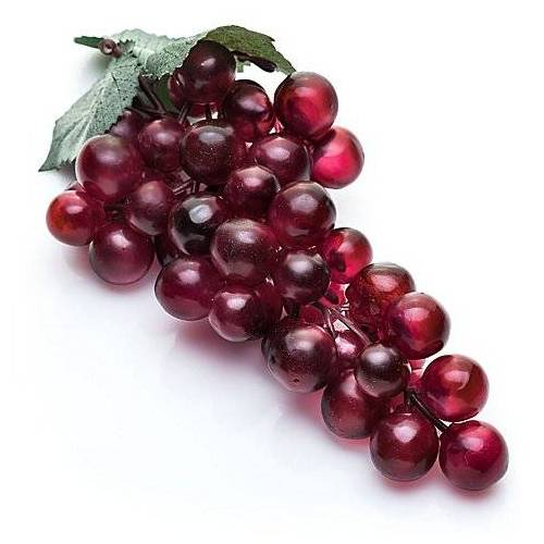 Weintrauben-Dolde, burgund, 15 cm