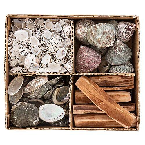 Muschel- und Treibholz-Mix, 1–10 cm, 4-fach