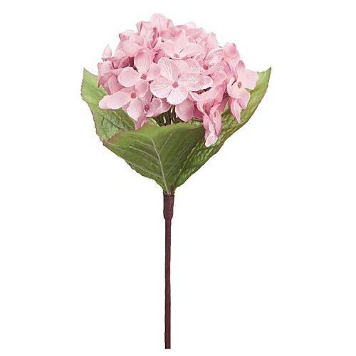 Hortensie, rosa, 28 cm