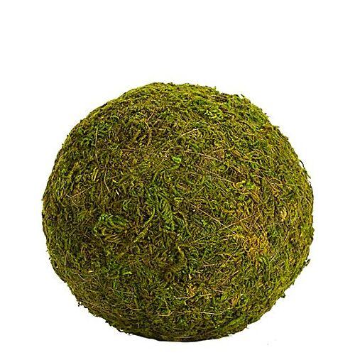 Moos-Kugel, 10 cm Ø