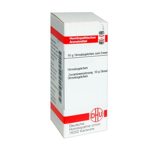 CAPSICUM D 4 Globuli 10 g
