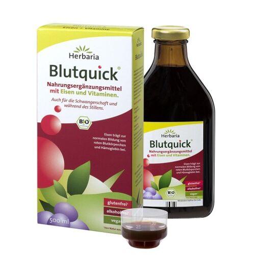 BLUTQUICK Saft 500 ml